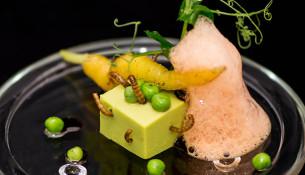 Petit Pois carré, écume de carottes, vers de farine © Cook and Shoot