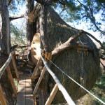 cabane-cocon-domaine-des-ormes