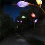 berges-du-rhone-lumilierre