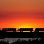 Petit train de la Baie de Somme-NBryant (1)