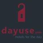 dayuse3