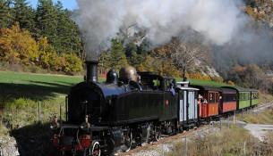 train-des-pignes-locomotiva