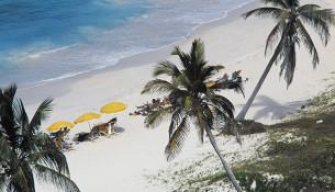 Saint Martin, parte francesa, Caraibi